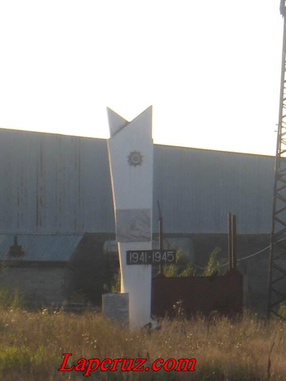 stela v AS