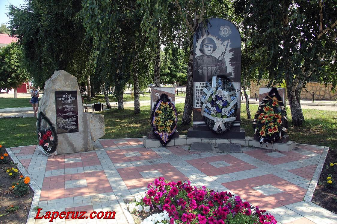 petrovsk_29
