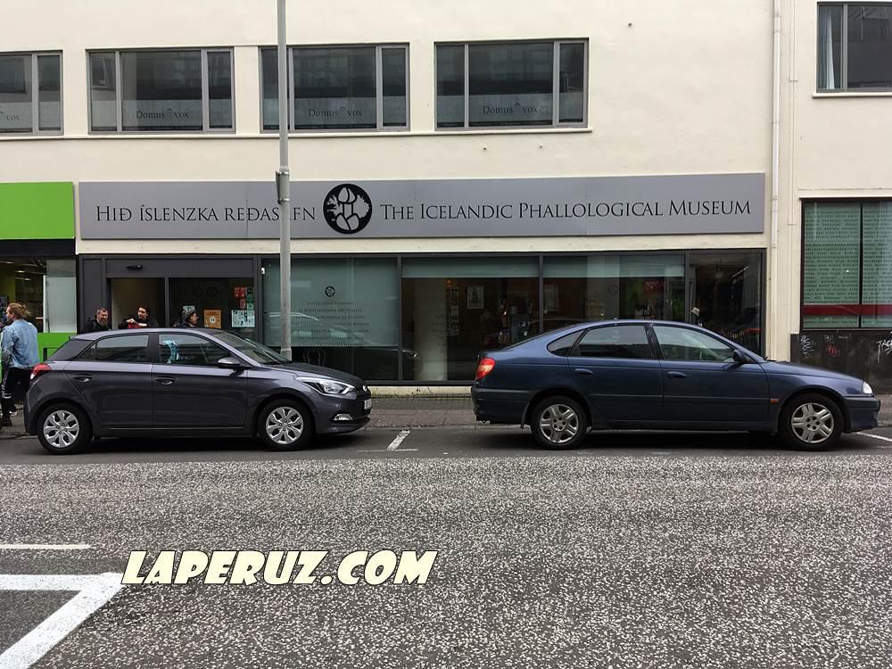 phallological_museum_rejkyavik