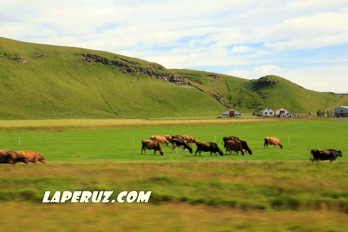 iceland_view_2