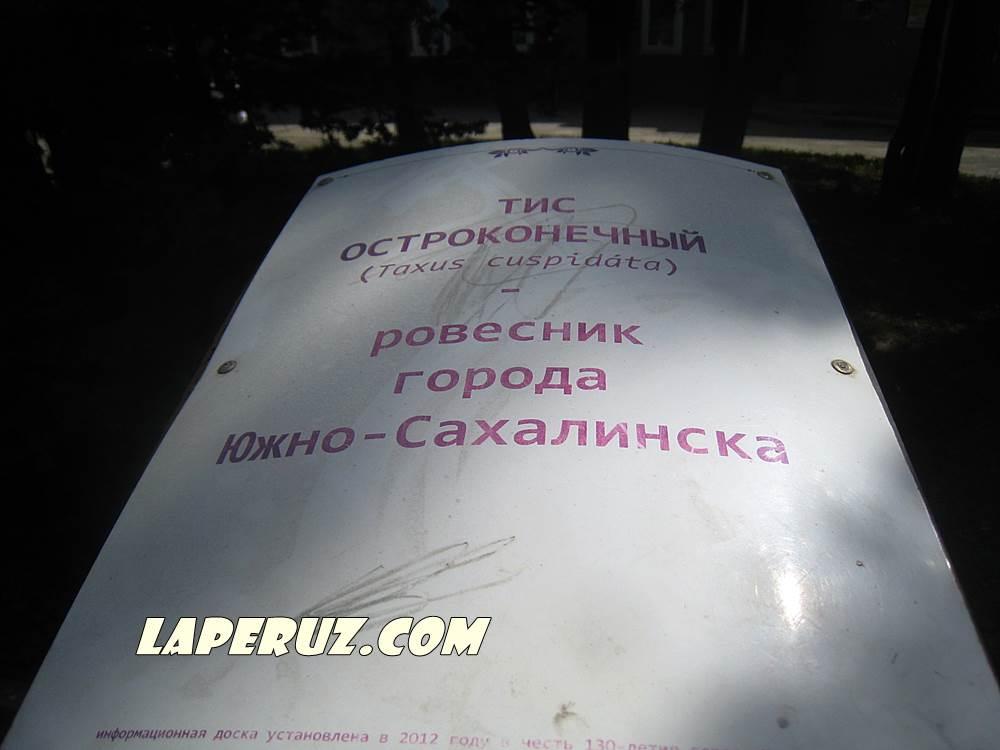 sahalinskii_tis_1
