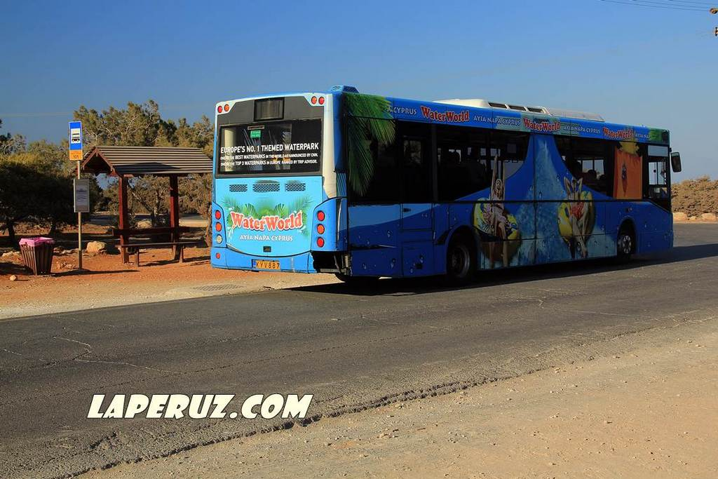 kavo_greko_avtobus