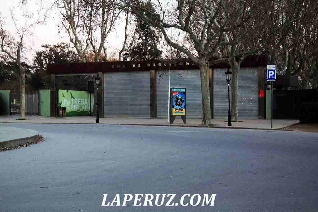 Barcelona_zoopark_1