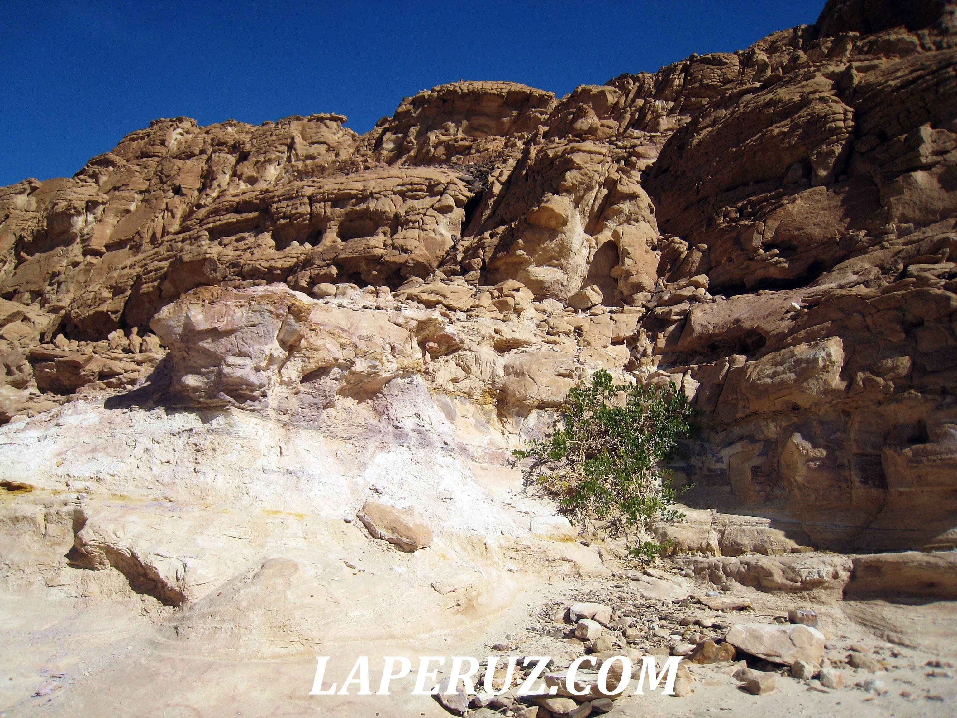 cvetnoi_kanyon_egypt_2
