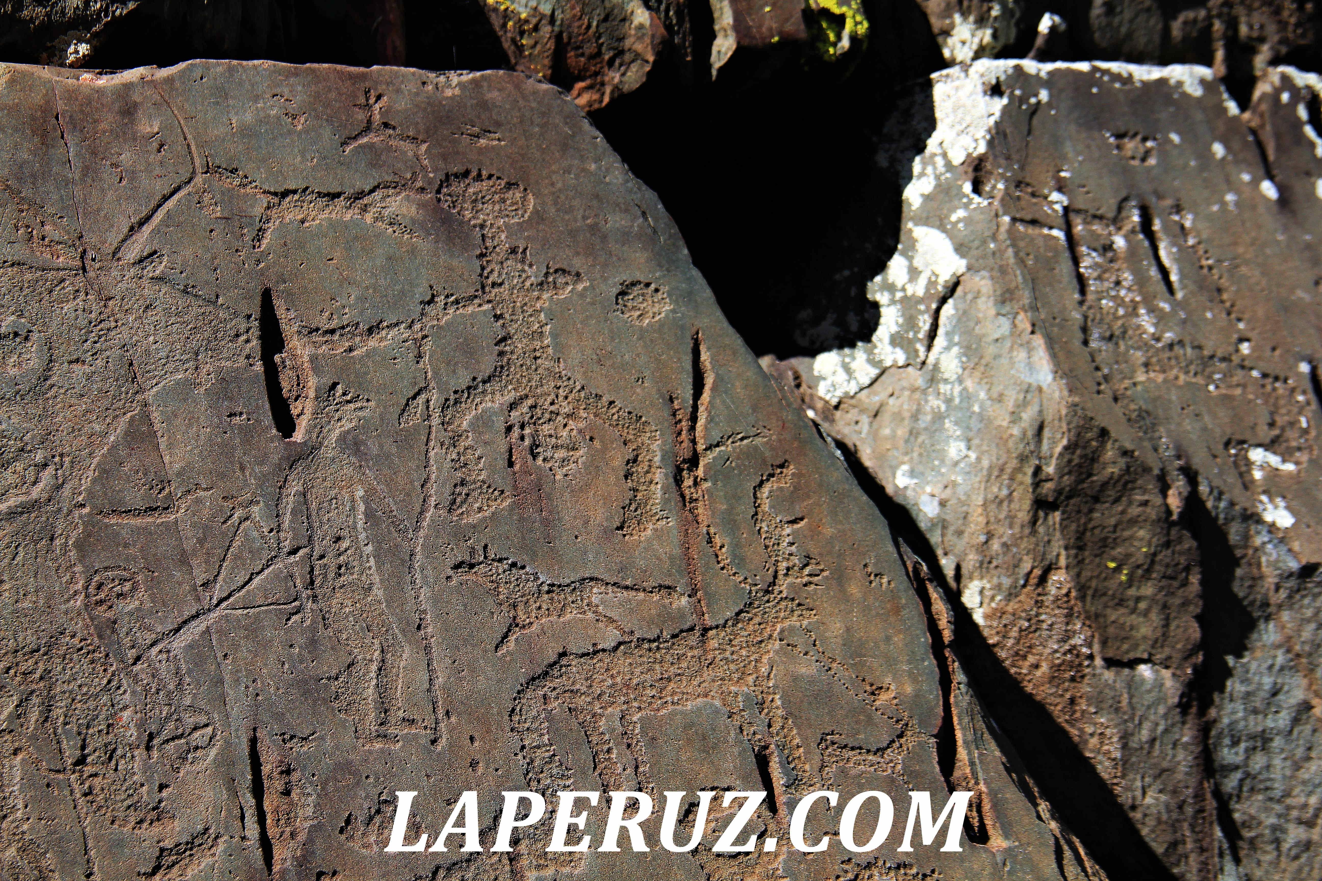 petroglify_altai_29