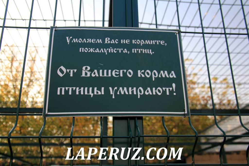 zoopark_preobrajenskii_monastyr_murom_4