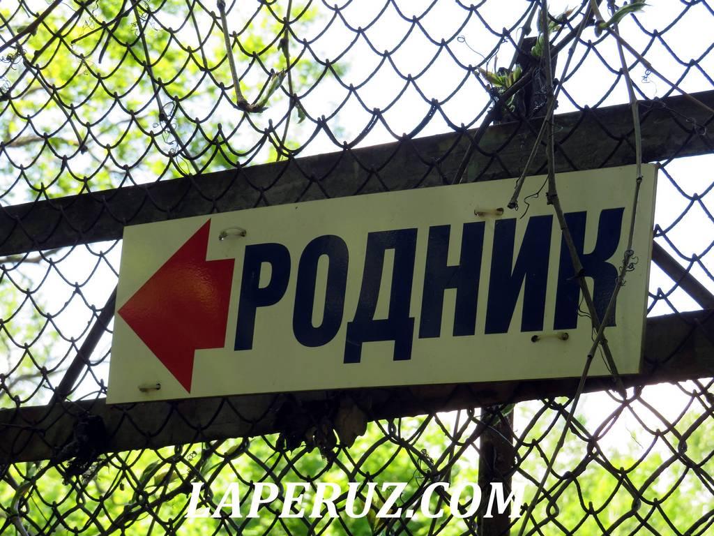 bogatyrskiy_rodnik_saratov