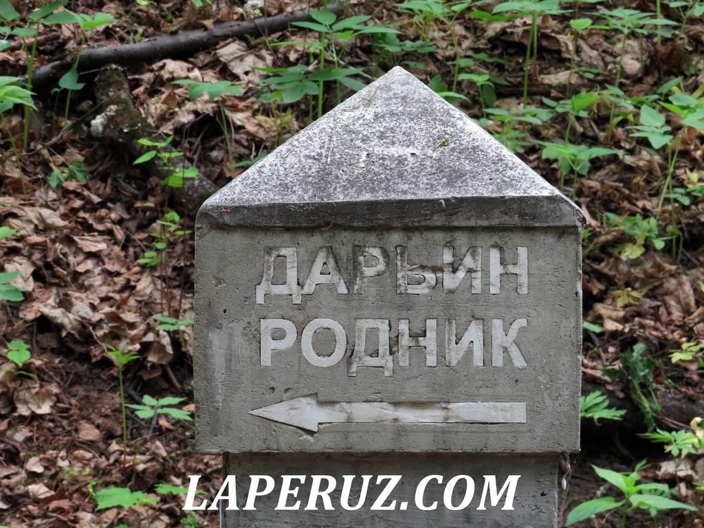darin_rodnik_saratov_8