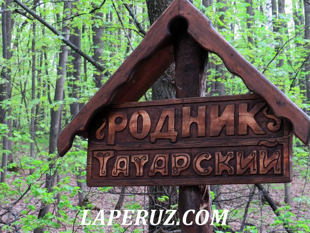tatarskiii_rodnik_saratov_5