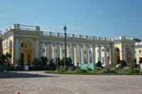 В Александровском парке Царского села восстановят старую просеку