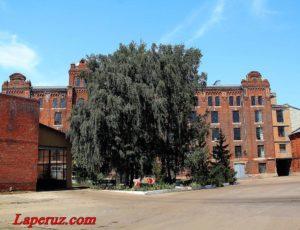 Мукомольный завод №7 — Балашов, улица Советская, 188