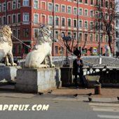 В Санкт-Петербурге отреставрируют скульптуры Львиного мостика