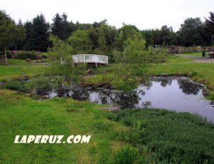 Ботанический сад в Рейкьявике. Древняя прачечная и кафе в тропиках