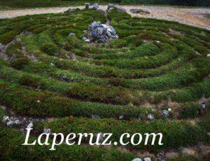 Большой Заяцкий остров: Пётр Первый, лабиринты и голубика